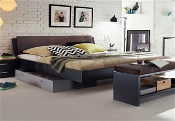 Hasena Vilo Orva Ravo Real Leather Modern Bed